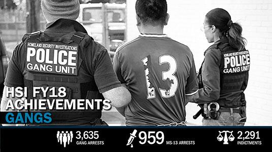 Web Feature: HSI FY18 Achievements: Combating Gangs
