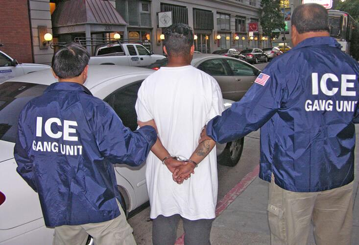 ICE Gang Unit Officers apprehend an individual.
