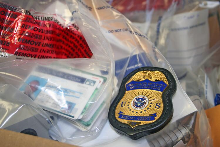 Seized counterfeit identification cards are displayed.