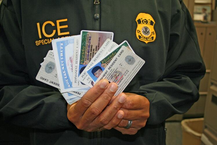 An HSI special agent displays fake government ID cards.