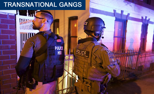 ICE HSI leads the largest street gang take-down in New York City history
