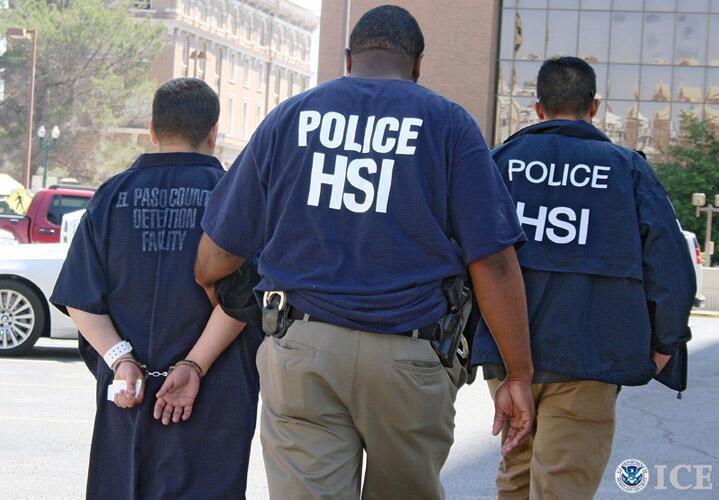 hsi arrests el paso man suspected of growing marijuana in