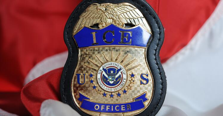 ice arrests 60 during public safety operation in new