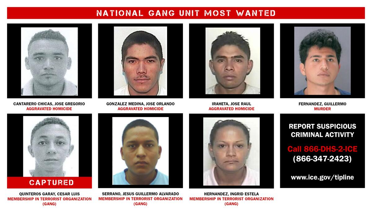 Operation Raging Bull Most Wanted