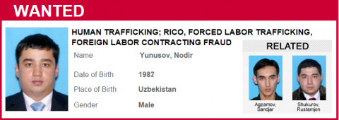 human trafficker profile