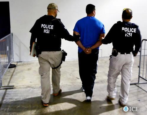 HSI dismantles major transnational drug trafficking, money laundering organization