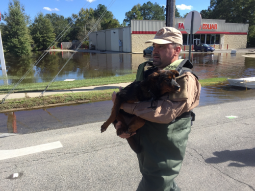 "ICE HSI Rapid Response Teams prove their motto ""Anytime, Anywhere"" in the wake of Hurricane Matthew"