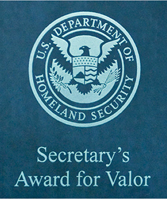 Secretary's Award for Valor
