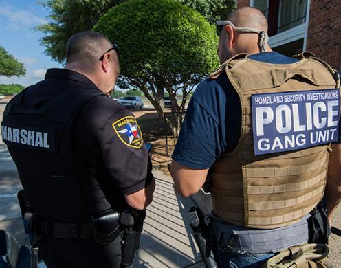 Numerous state, local and federal law enforcement partners, including ICE's Enforcement and Removal Operations (ERO), participated in the HSI-led operation, which ran March 26 to May 6.