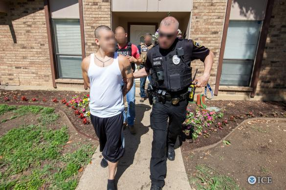 HSI concluded this weekend with 1,378 arrests across the United States