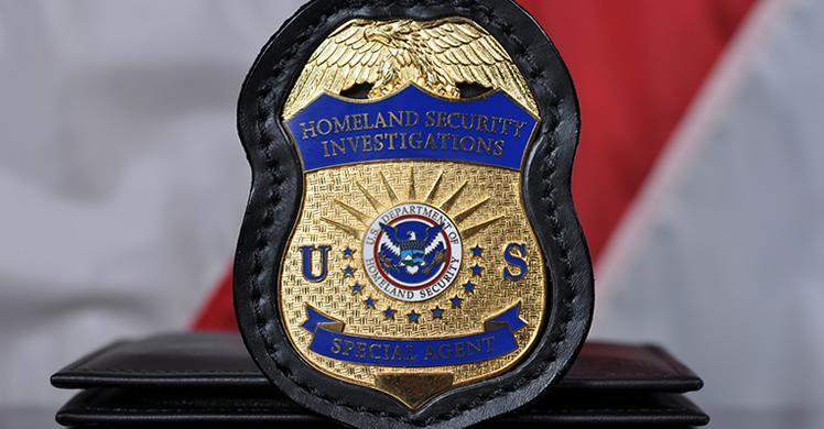 HSI Badge with Flag