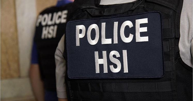 ICE HSI arrest 2 for fraud targeting actors and others