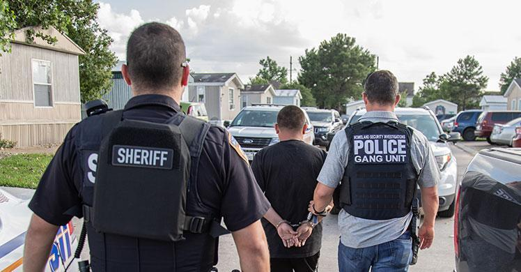 ICE Houston arrests 23 gang members, associates during operation targeting MS-13