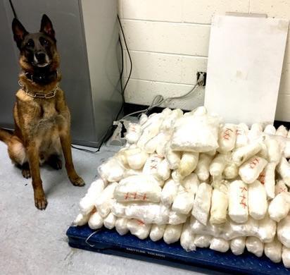 "Yuma County Sheriff's Office K-9 ""Jax"" with more than 221 lbs. of seized methamphetamine"