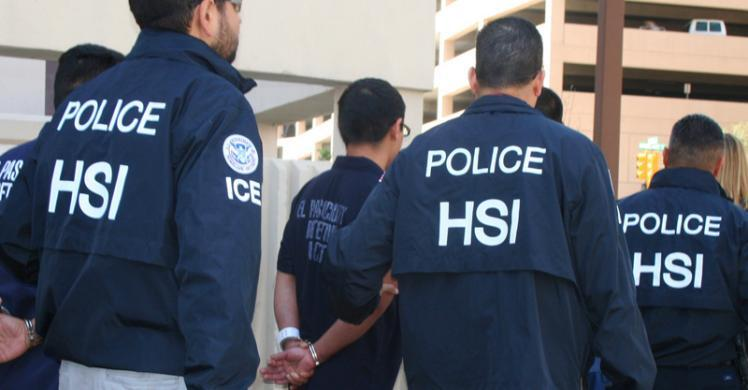 HSI arrests 7 members of international drug trafficking organization