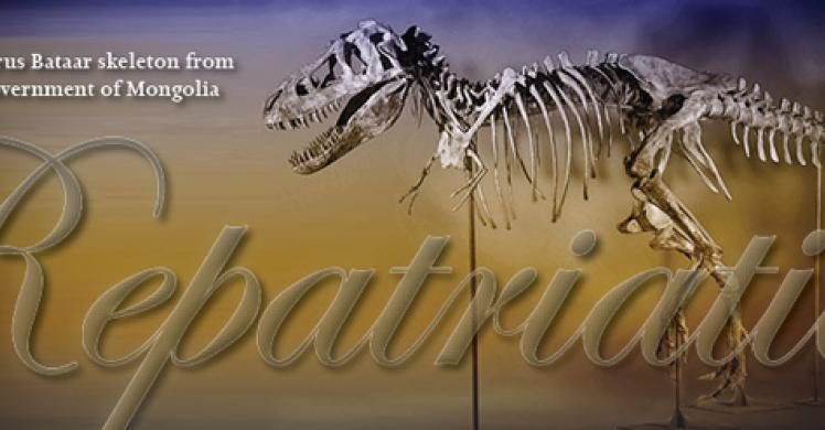 ICE and Manhattan US Attorney's Office return Tyrannosaurus Bataar skeleton to Mongolia