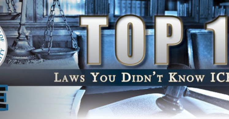 The top 10 laws you didn't know ICE enforces