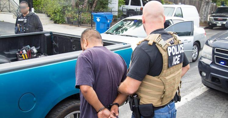 Image result for ice arrests