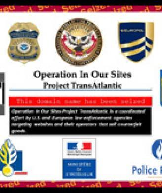 ICE, European law enforcement agencies and Europol seize 132 domain names  selling counterfeit merchandise in 'Project Cyber Monday 3' and 'Project  Transatlantic' operations
