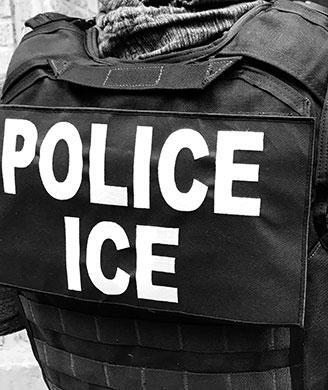 ICE arrests 31 in 5-day New York City metropolitan-area enforcement surge