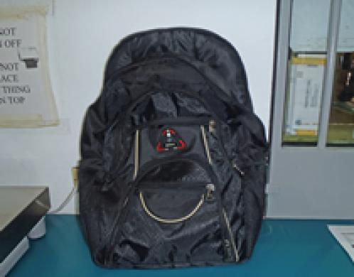 cocaine concealed in a backpack by cruise ship passengers