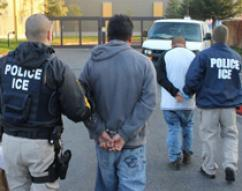 63 arrested in ICE operation targeting criminal aliens in San Jose area