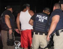 Central Florida ICE teams arrest 11 sex offenders, criminal aliens during Operation SOAR