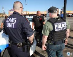 HSI arrests 638 gang members during month-long operation