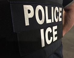 ICE arrests 32 sex offenders in Long Island during Operation SOAR
