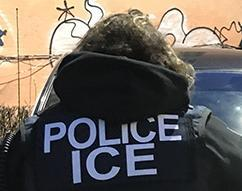 ICE arrests 225 during Operation Keep Safe in New York